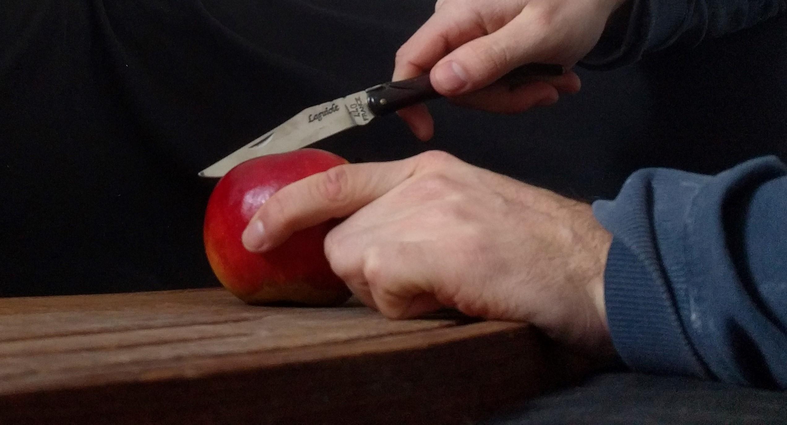 Laguiole Taschenmesser Test
