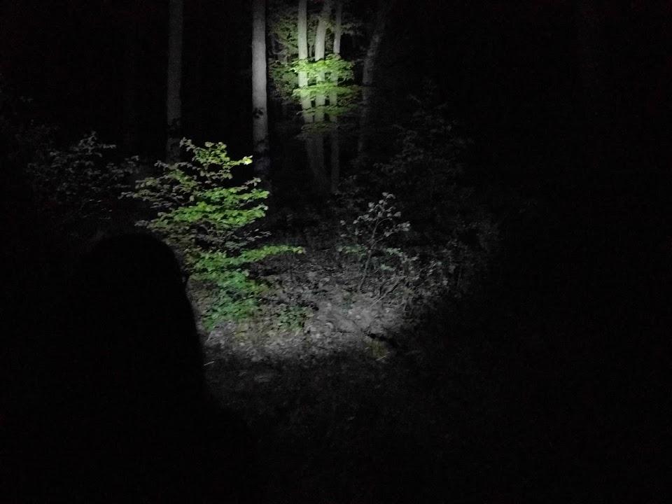 Taschenlampen Test 2
